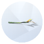 Image of Bird of Paradise from The Sims 4 for Gardening